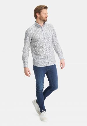 113310 113310 [Shirts LM] 3656 bladgroen
